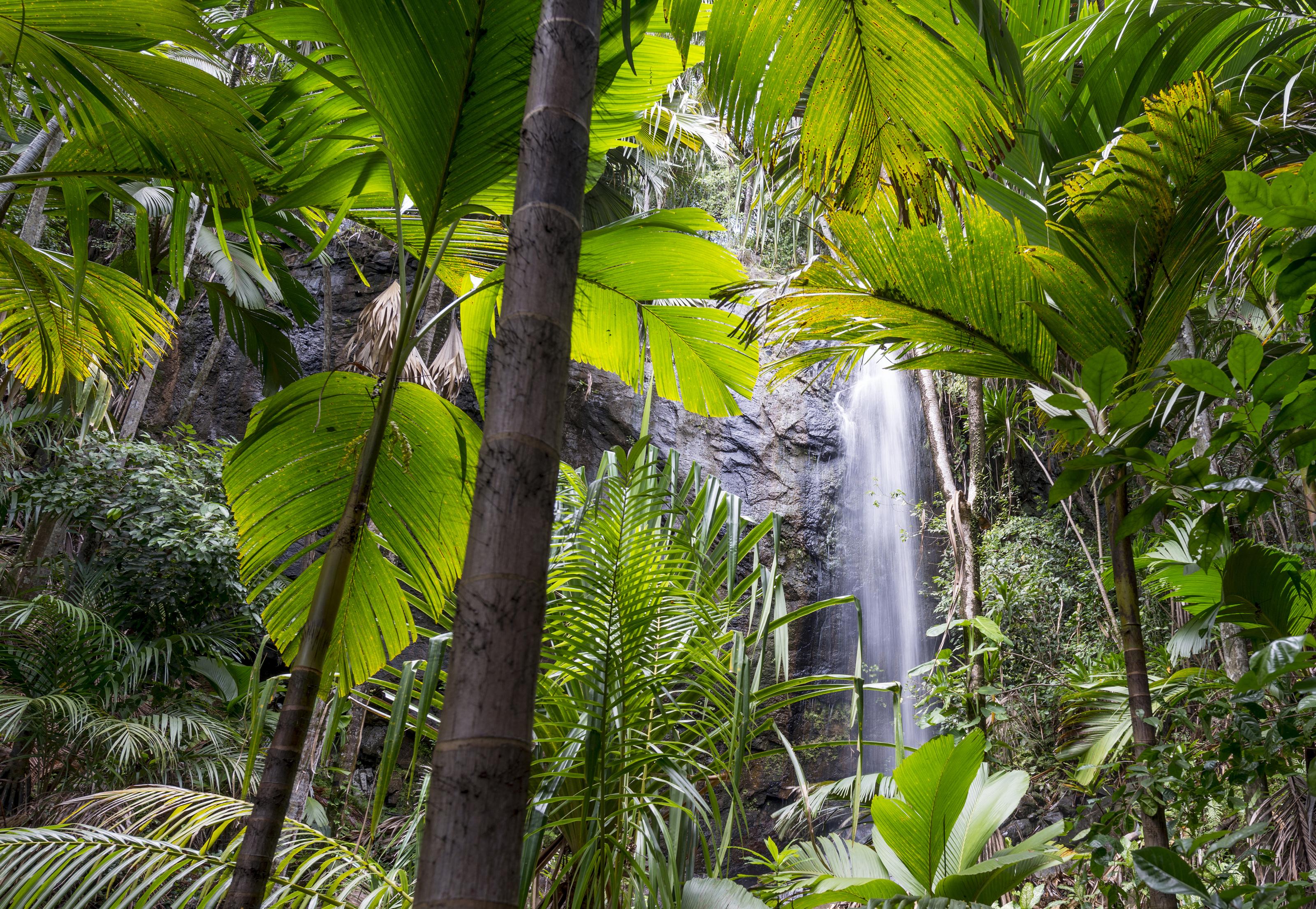 Delat vattenfall ger manga vinnare