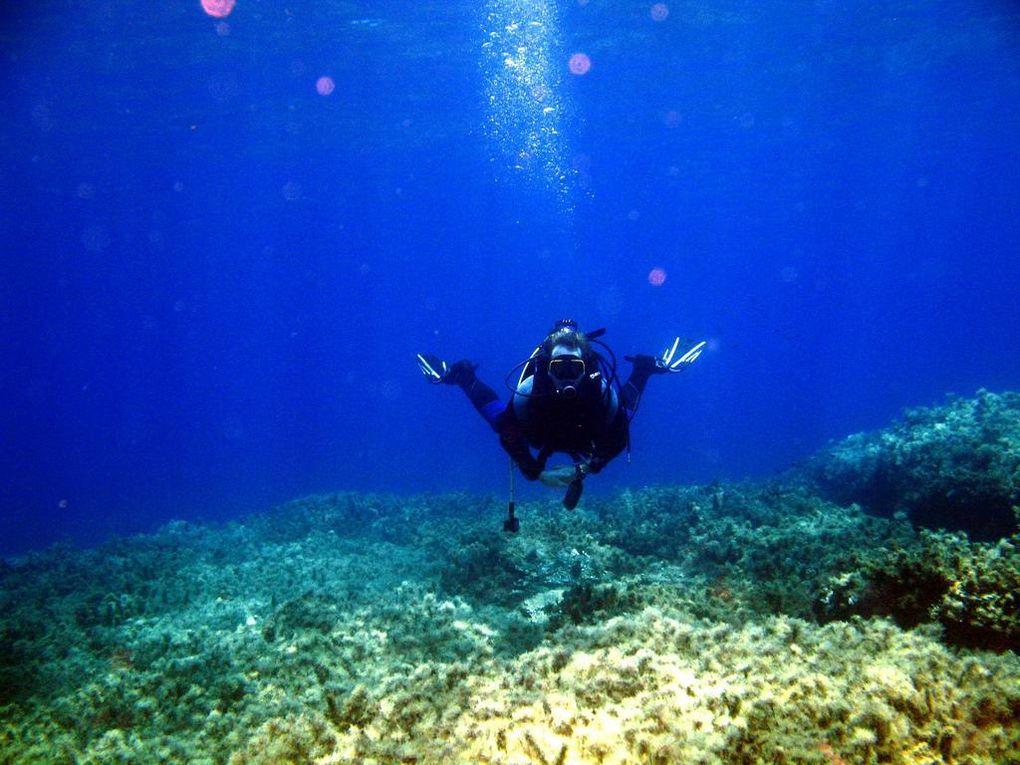 bästa snorkling grekland