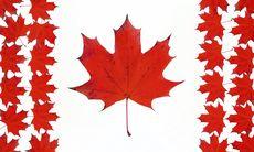 5 x udda upplevelser i Kanada