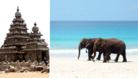 Indiens bästa stränder