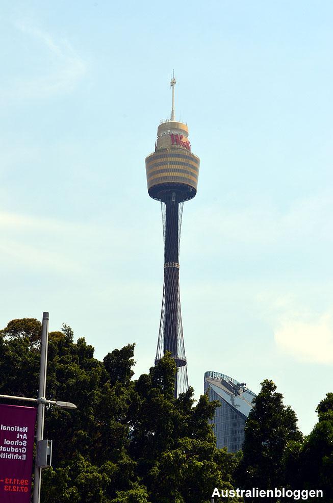 sydney-tower.jpg