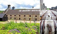 Skottland: Vallfärd till whiskyns källa