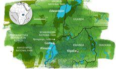 Guide: Östra Kongo