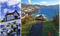 7 måsten på natursköna Azorerna