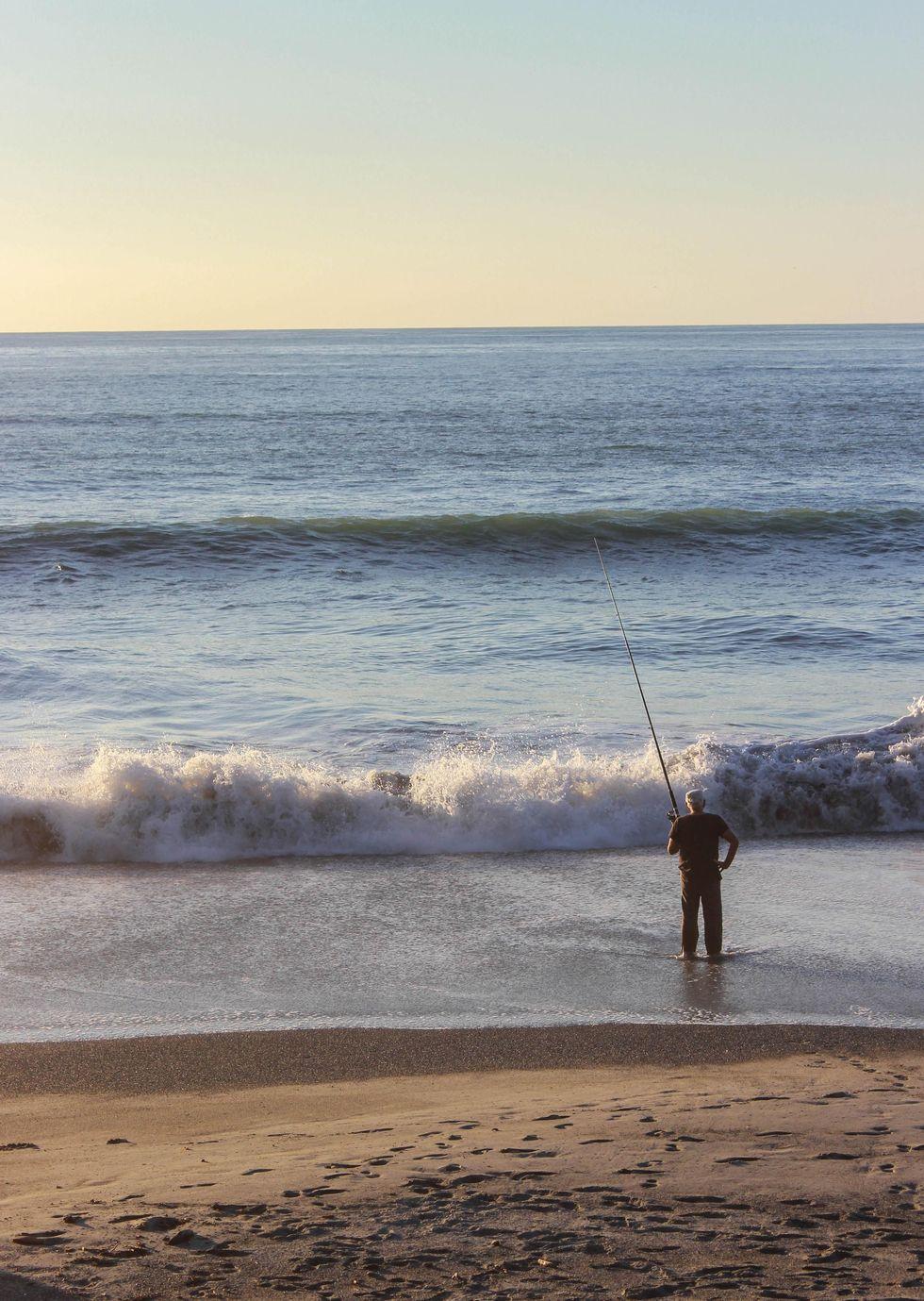 Punakaiki fiskaren.jpg
