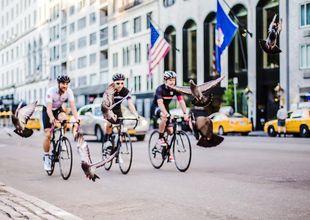 Guidade turer: 5 nya sätt att se NYC