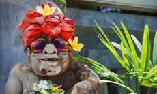 Mutorna du antagligen kommer behöva betala på Bali