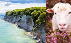 8 häftiga naturupplevelser i Tyskland
