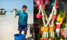Khao Lak: Tillbaka till paradiset