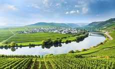 Guide: Mosel, Tyskland