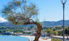 Redaktionens favoriter: L'Ile Rousse – Korsikas perfekta semesterstad
