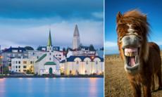 Efter framgångarna i EM – svensk rusning till Island