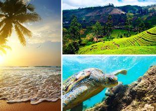 Vinn en oförglömlig resa till Sri Lanka – så tävlar du