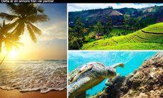 Vinn drömresan till Sri Lanka – så tävlar du