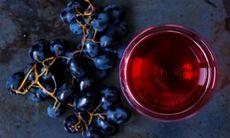 Italiens första dygnet-runt-fontän med gratis vin har öppnat