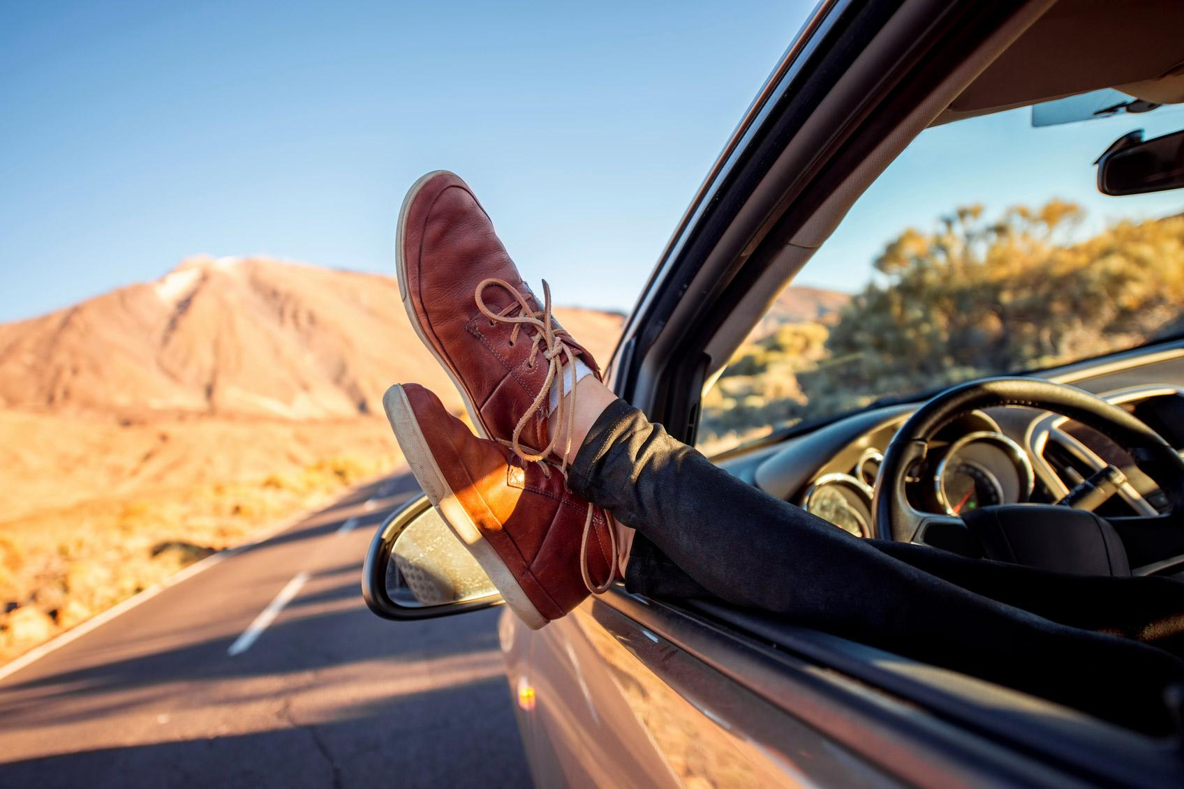 Musk lat inte bilen kora sjalv