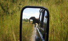 Roadtrip över den afrikanska kontinenten