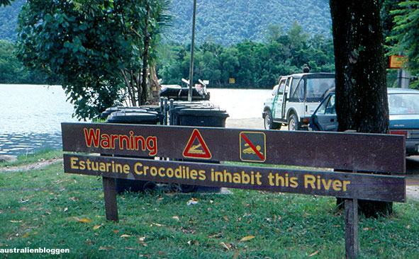 cape-tribulation-croc.jpg